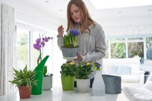 Woman Caring For Houseplants Smelling Blooms - Anxiety Free