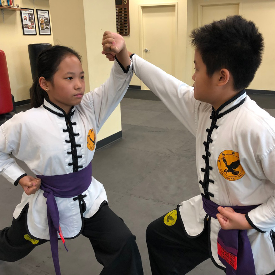 Children pracitcing martial arts. Martial arts testimonials and reviews for Baltimore martial arts schools