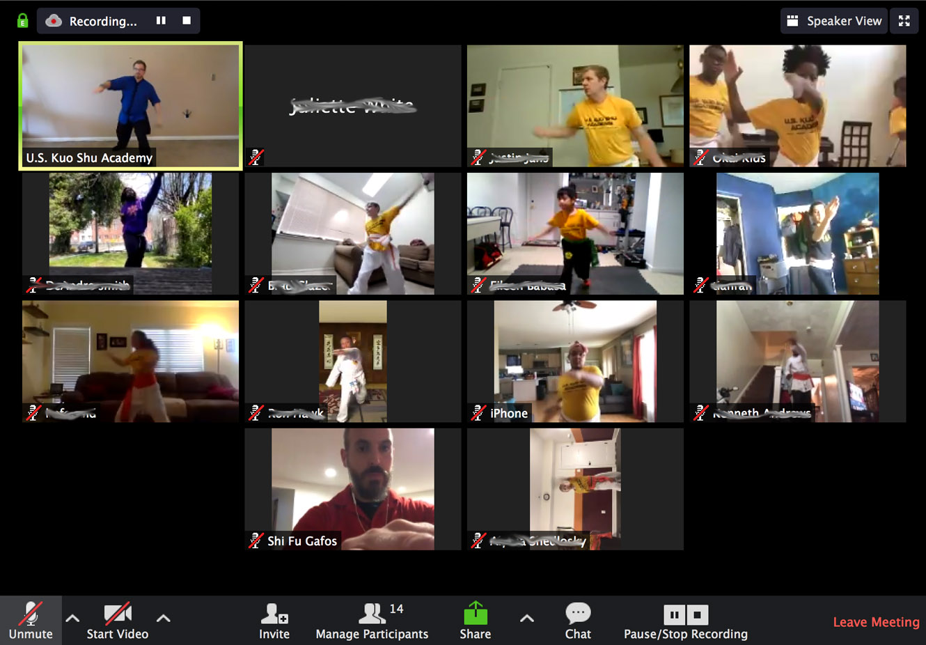 Martial Arts Goes Online: U.S. Kuo Shu Academy Offers Virtual Lessons During the Coronavirus Shutdown